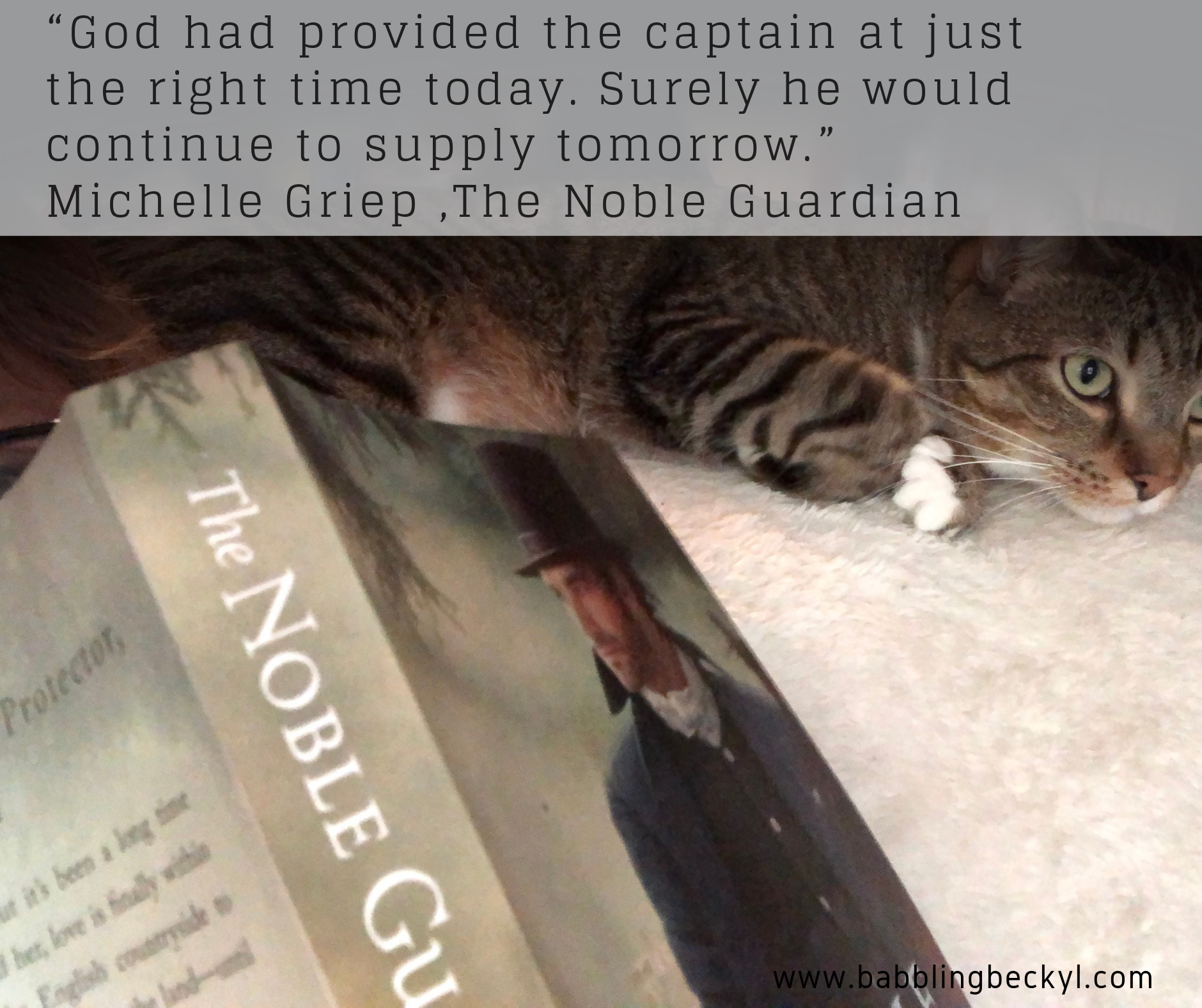 noble guardian cat