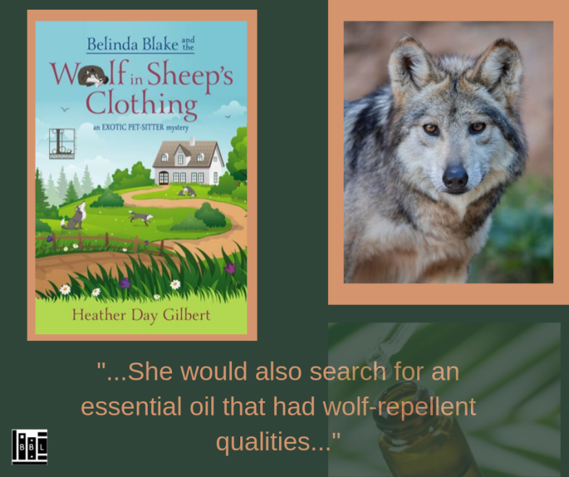 Belinda Blake and the Wolf..1